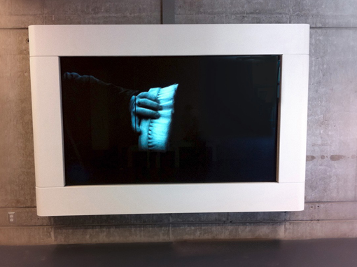 For Pheasant Island, from 17 Films for 17 Islands, Installation View, Richmond Olympic Oval