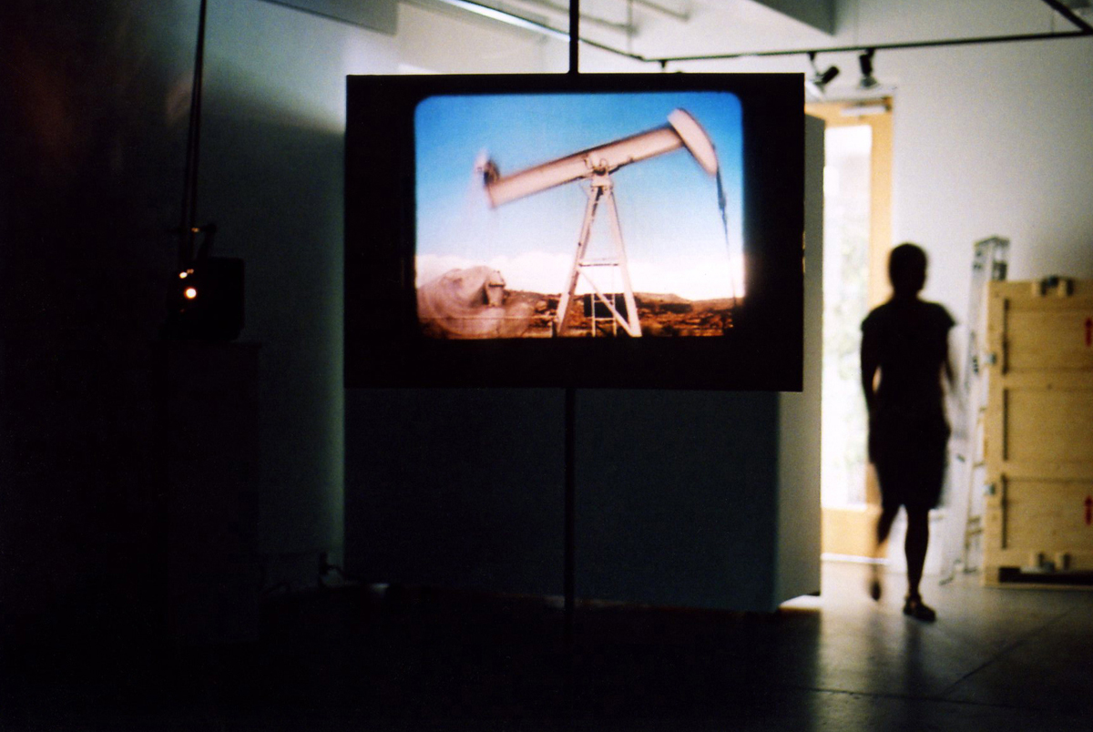 The Blair Bush Project, Installation View, Alternator Gallery